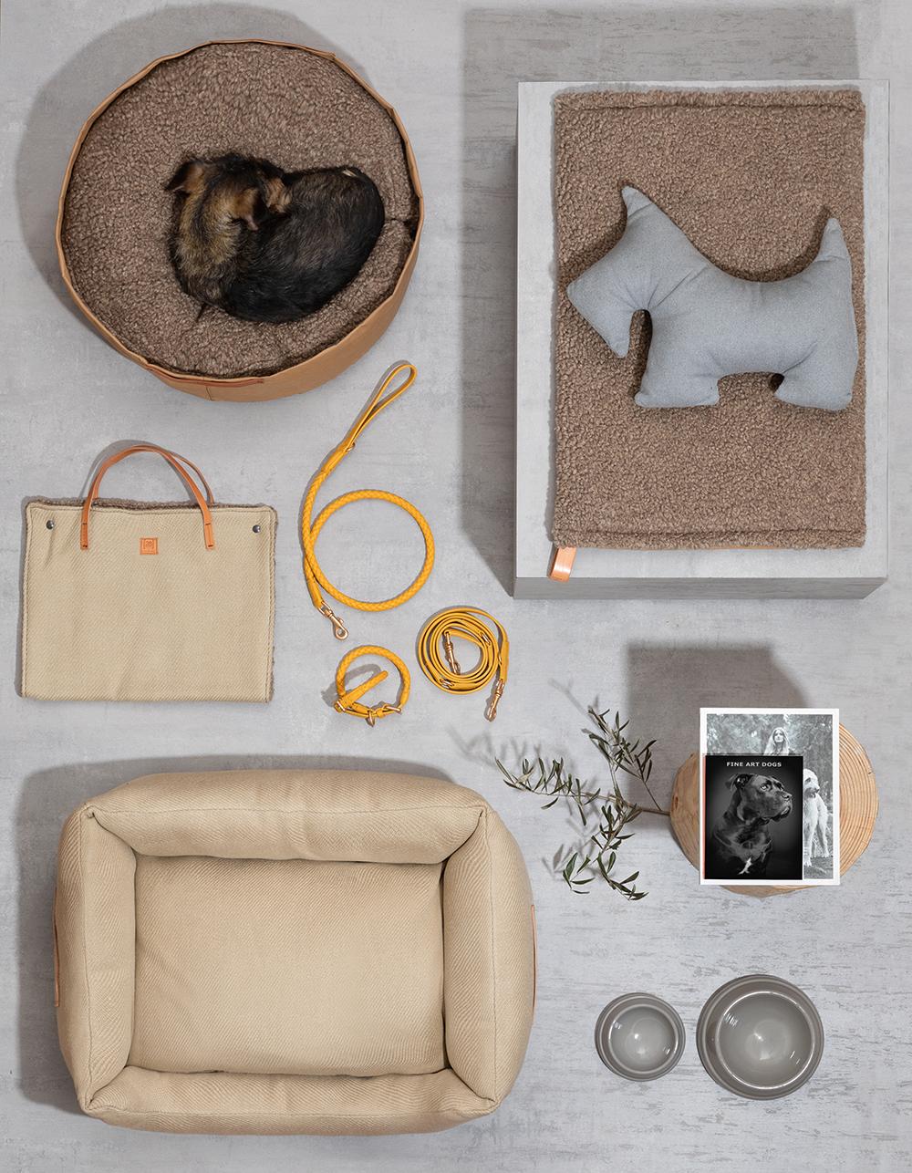 2.8 design for dogs diseños para mascotas en matèria barcelona